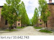 Купить «Auschwitz Birkenau Concentration Camp OŠ›wiÄ. cim Museum Southern Poland Europe EU UNESCO.», фото № 33642743, снято 8 мая 2019 г. (c) age Fotostock / Фотобанк Лори