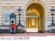 Купить «Foot guards Buckingham Palace London England United Kingdom Capital River Thames UK Europe EU.», фото № 33646935, снято 10 мая 2019 г. (c) age Fotostock / Фотобанк Лори