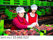 Купить «Focused woman working on fruit sorting line at warehouse, checking quality of nectarines», фото № 33666023, снято 5 июля 2020 г. (c) Яков Филимонов / Фотобанк Лори
