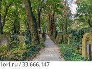 Купить «New Jewish Cemetery, Krakow, Poland», фото № 33666147, снято 23 сентября 2019 г. (c) Boris Breytman / Фотобанк Лори