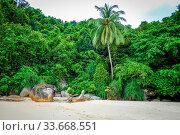 Teluk Pauh paradise beach in Perhentian Islands, Terengganu, Malaysia. Стоковое фото, фотограф Zoonar.com/Laurent Davoust / age Fotostock / Фотобанк Лори