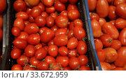 Купить «Showcase of greengrocery with fresh ripe tomatoes. Healthy organic products», видеоролик № 33672959, снято 14 ноября 2019 г. (c) Яков Филимонов / Фотобанк Лори