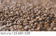 Fragrant roasted coffee beans fall down. Slow motion, Full HD video, 240fps, 1080p. Стоковое видео, видеограф Ярослав Данильченко / Фотобанк Лори