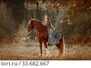 Купить «Beautiful long-haired blonde young woman in national russian style with red Vladimir draft horse in autumn forest», фото № 33682667, снято 21 сентября 2019 г. (c) Julia Shepeleva / Фотобанк Лори