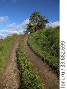 Грунтовая дорога , горка, синее небо зеленая трава. Редакционное фото, фотограф Цветкова Елена / Фотобанк Лори