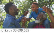 Купить «African American man spending time with his father and his son», видеоролик № 33699535, снято 19 февраля 2020 г. (c) Wavebreak Media / Фотобанк Лори