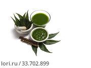 Купить «Medicinal Neem leaves in mortar and pestle with neem paste, juice and twigs on white background.», фото № 33702899, снято 1 октября 2016 г. (c) easy Fotostock / Фотобанк Лори