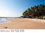 Seashore with palm trees and big stones. India. Kerala. (2014 год). Стоковое фото, фотограф Вознесенская Ольга / Фотобанк Лори