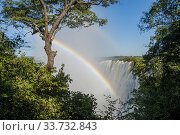 Купить «Rainbow over Victoria Falls seen from the shore of the Zambezi River at the section above the falls near Livingston in Zambia.», фото № 33732843, снято 26 марта 2008 г. (c) age Fotostock / Фотобанк Лори
