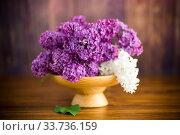 Купить «bouquet of beautiful purple lilacs in a wooden vase», фото № 33736159, снято 11 мая 2020 г. (c) Peredniankina / Фотобанк Лори