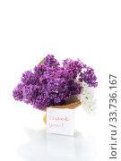 Купить «bouquet of beautiful blooming lilacs in a vase», фото № 33736167, снято 11 мая 2020 г. (c) Peredniankina / Фотобанк Лори