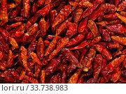 Купить «Closeup of dried cayenne peppers», фото № 33738983, снято 25 мая 2020 г. (c) Яков Филимонов / Фотобанк Лори