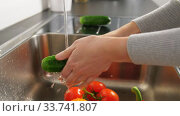 woman washing fruits and vegetables in kitchen. Стоковое видео, видеограф Syda Productions / Фотобанк Лори