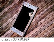 Купить «Prairie Barn Saskatchewan summer Owl in Window», фото № 33750927, снято 1 июня 2020 г. (c) age Fotostock / Фотобанк Лори