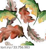 Купить «Oak leaves. Leaf plant botanical garden floral foliage. Seamless background pattern. Fabric wallpaper print texture. Aquarelle leaf for background, texture, wrapper pattern, frame or border.», фото № 33756983, снято 7 июля 2020 г. (c) easy Fotostock / Фотобанк Лори