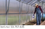 Купить «Happy and positive young adult woman watering from a watering can beds in spring greenhouse. Agricultural and farming theme», видеоролик № 33757635, снято 15 мая 2020 г. (c) Алексей Кузнецов / Фотобанк Лори