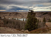 Купить «Cypress Hills Alberta Saskatchewan in the hills Alberta», фото № 33760867, снято 10 июля 2020 г. (c) age Fotostock / Фотобанк Лори