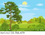 Купить «Summer landscape with pine and fir trees, bushes, flowers, grass, sun and blue sky. Vector», фото № 33766479, снято 13 июля 2020 г. (c) age Fotostock / Фотобанк Лори