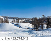 Купить «Beautiful winter landscape, mountains covered with snow, forest, a herd of horses in the distance on a sunny frosty day», фото № 33774043, снято 27 января 2020 г. (c) Наталья Волкова / Фотобанк Лори