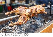 Cooking lamb carcass on a spit over hot charcoals. Стоковое фото, фотограф FotograFF / Фотобанк Лори