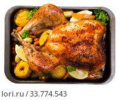 Купить «Image of baked turkey», фото № 33774543, снято 27 мая 2020 г. (c) Яков Филимонов / Фотобанк Лори