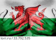 Купить «Upper part of female body, hands covering breasts, Wales», фото № 33792535, снято 5 июня 2020 г. (c) age Fotostock / Фотобанк Лори