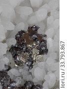 Crystals of Sphalerite (dark colour), Pyrite (golden colour) and Quartz (white colour), Peru. Стоковое фото, фотограф John Cancalosi / Nature Picture Library / Фотобанк Лори