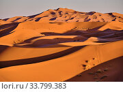 Morocco, Tafilalet region, Merzouga desert, erg Chebbi dunes. Стоковое фото, фотограф Philippe Michel / age Fotostock / Фотобанк Лори