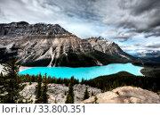 Купить «Peyto Lake Alberta Canada emerald green color», фото № 33800351, снято 11 июля 2020 г. (c) age Fotostock / Фотобанк Лори
