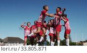 Купить «Rugby players celebrating on the field», видеоролик № 33805871, снято 13 ноября 2019 г. (c) Wavebreak Media / Фотобанк Лори