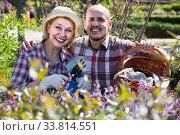 Купить «portrait of a lovely senior couple taking care of green plants in the garden», фото № 33814551, снято 22 мая 2020 г. (c) Яков Филимонов / Фотобанк Лори