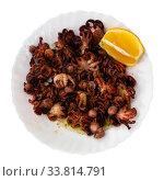 Small fried octopus with sour cream and vegetables. Стоковое фото, фотограф Яков Филимонов / Фотобанк Лори