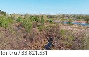 Купить «A huge thicket of coniferous green forest and flooded field», видеоролик № 33821531, снято 2 июня 2020 г. (c) Константин Шишкин / Фотобанк Лори