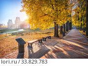 Купить «Аллея в Царицыно около дворца осенним утром», фото № 33829783, снято 15 октября 2018 г. (c) Baturina Yuliya / Фотобанк Лори