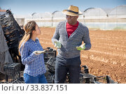 Купить «Woman and man farmers talking outdoors», фото № 33837151, снято 5 августа 2020 г. (c) Яков Филимонов / Фотобанк Лори