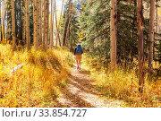 Купить «Hike in the autumn mountains. Fall season theme.», фото № 33854727, снято 2 июня 2020 г. (c) easy Fotostock / Фотобанк Лори