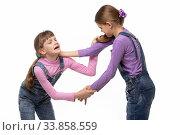 Купить «Две девочки дерутся и делают друг другу больно», фото № 33858559, снято 15 мая 2020 г. (c) Иванов Алексей / Фотобанк Лори
