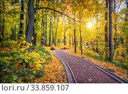 Купить «Дорожка в парке Царицыно и солнце сквозь ветви осенних деревьев», фото № 33859107, снято 15 октября 2018 г. (c) Baturina Yuliya / Фотобанк Лори