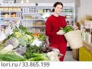 friendly young woman choosing seasonal vegetables in farm store. Стоковое фото, фотограф Яков Филимонов / Фотобанк Лори