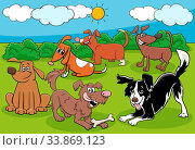 Cartoon Illustration of Dogs and Puppies Funny Animal Characters Group. Стоковое фото, фотограф Zoonar.com/Igor Zakowski / easy Fotostock / Фотобанк Лори