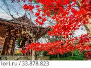 Купить «Bell of New Year s Eve and autumn leaves. Shooting Location: Tokyo metropolitan area», фото № 33878823, снято 7 июля 2020 г. (c) age Fotostock / Фотобанк Лори