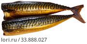 Cold-smoked mackerel without head. Стоковое фото, фотограф Яков Филимонов / Фотобанк Лори