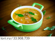 spring soup with vermicelli, vegetables and herbs. Стоковое фото, фотограф Peredniankina / Фотобанк Лори