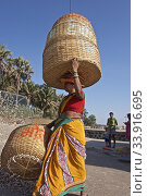 Купить «Korlai beach and its fishing activity with the women at work on the drying and sieving of the dried shrimps, then the portage with these enormous baskets. India 2019.», фото № 33916695, снято 19 марта 2019 г. (c) age Fotostock / Фотобанк Лори