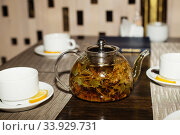 Купить «Herbal tea with aroma fresh herb», фото № 33929731, снято 17 апреля 2016 г. (c) Nataliia Zhekova / Фотобанк Лори