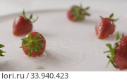 Купить «Ripe red strawberry fruit falls into the center of a plate of water with splashes and drops of water. A few berries lie on the white plate. Slow motion. Full HD video, 240fps,1080p.», видеоролик № 33940423, снято 2 июля 2020 г. (c) Ярослав Данильченко / Фотобанк Лори