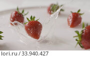 Купить «Ripe red strawberry fruit falls into the center of a plate of water with splashes and drops of water. A few berries lie on the white plate. Slow motion. Full HD video, 240fps,1080p.», видеоролик № 33940427, снято 2 августа 2020 г. (c) Ярослав Данильченко / Фотобанк Лори