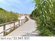 Купить «Wooden empty board walk leading through sandy dunes to Mediterranean Sea and beach of Los Arenales del Sol or Arenals del Sol. Costa Blanca, Europe, Spain. Espana», фото № 33941931, снято 2 июня 2020 г. (c) Alexander Tihonovs / Фотобанк Лори