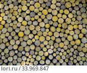 Стена, сложенная из тонких деревянных поленьев круглой формы. Стоковое фото, фотограф Вячеслав Палес / Фотобанк Лори