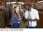 Girl and man having emotional discussion at stable. Стоковое фото, фотограф Яков Филимонов / Фотобанк Лори